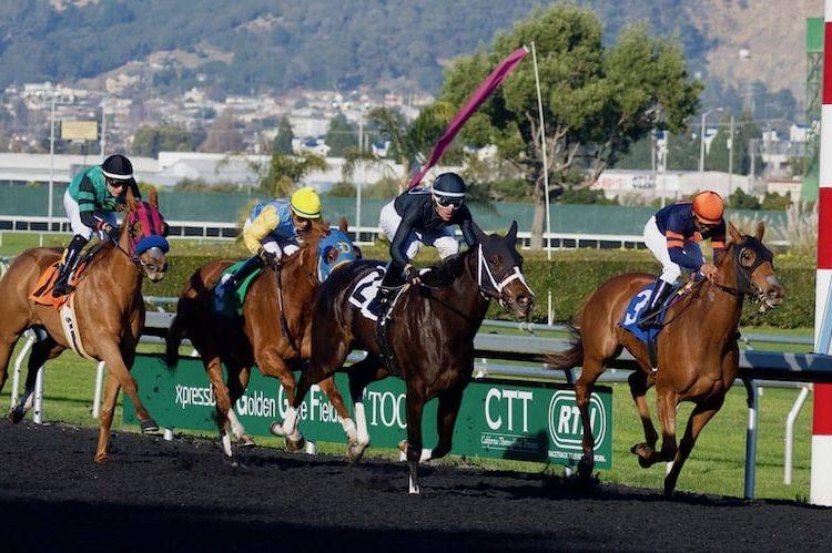 Combien d'argent pouvez-vous gagner en pariant sur les courses de chevaux ?